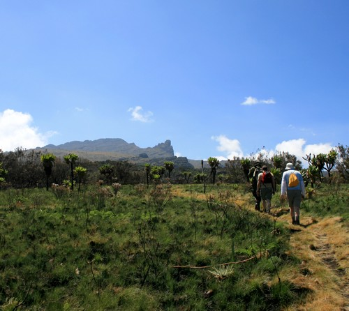 2008_03_mount_elgon-205.jpg